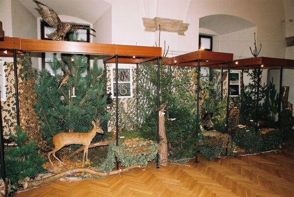 Fauna nadpilicznych parków krajobrazowych