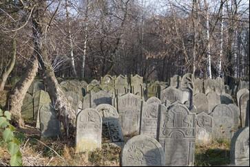 Żydzi. Zapomniane dziedzictwo Polski i Szydłowca